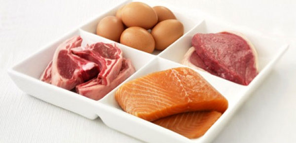 intro-proteines