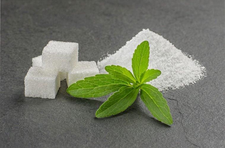 Alternative antibiotique: La Stevia tue l'agent pathogène de la maladie de lyme!