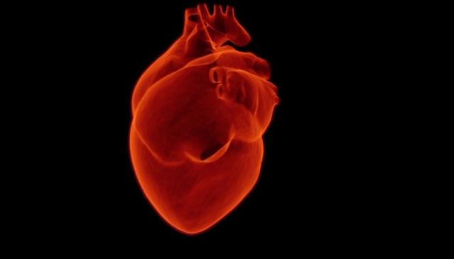 Certains faits étonnants sur le corps humain qui ne doivent pas rester inconnus!